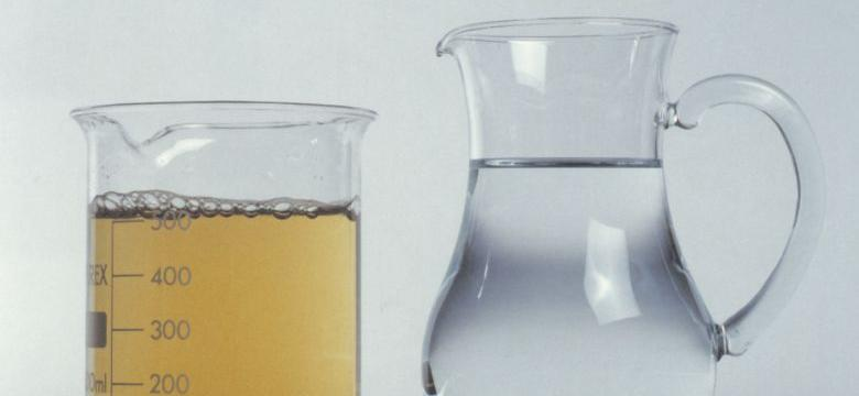 unfiltered and filtered water in beakers